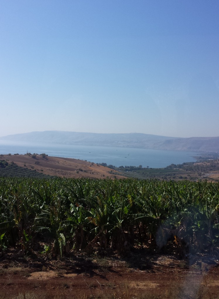 Slope of the Mount of Beatitudes to the Sea of Galilee