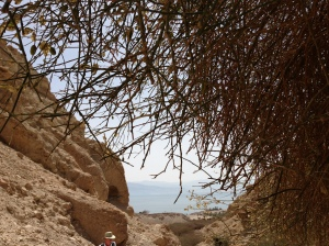 View From En Gedi to the Dead Sea