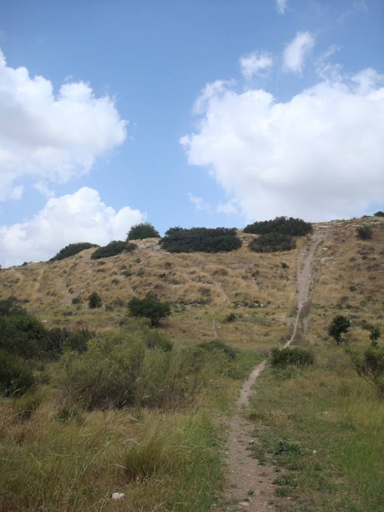 Pathway To Hillside Of Israelite Encampment
