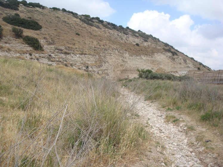 Creek Bed In Valley of Elah