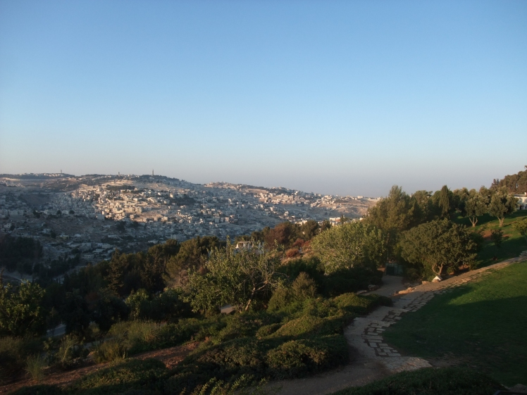 Peace Forest Overlooking Jerusalem