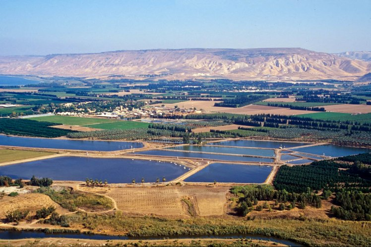 Jordan Valley Fields (Courtesy of Pictorial Library of Bible Lands)