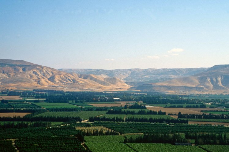 Green Fields of Israel (Courtesy of Pictorial Library of Bible Lands)