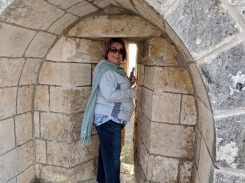 Shelley on the Temple Mount